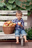 Jongen, die appelen eten Royalty-vrije Stock Fotografie