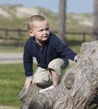 Jongen die boom beklimt Royalty-vrije Stock Afbeeldingen