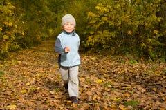 Jongen die in de herfstlandschap loopt Royalty-vrije Stock Foto's