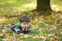 Jongen die in de herfstpark ligt Royalty-vrije Stock Fotografie