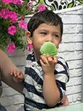 Jongen die een roomijs groen in een roomkegel eten Stock Foto