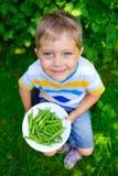 Jongen die groene Erwten houden stock fotografie