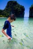 Jongen die kleurrijke tropische vissen voedt stock afbeeldingen