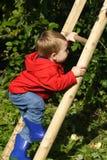 Jongen die Ladder beklimt Royalty-vrije Stock Foto's