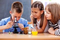 Jongen die microscoop onderzoekt Royalty-vrije Stock Fotografie