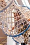 Jongen die in netto koker van pretpark faciliteit beklimmen stock afbeeldingen