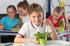 Jongen die over installaties in schoolklasse leert stock fotografie