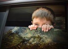Jongen die uit Autoraam Dinosaurus t-Rex bekijken stock afbeelding