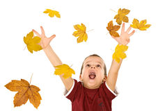 Jongen die voor de dalende de herfstbladeren bereikt Royalty-vrije Stock Afbeeldingen