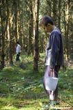 Jongen die wilde paddestoelen plukt Stock Foto's
