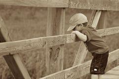 Jongen op een brug Stock Foto's