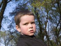 jongen en bomen Royalty-vrije Stock Foto's