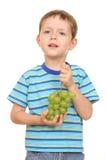 Jongen en druiven Stock Afbeeldingen