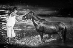 Jongen en een paard Royalty-vrije Stock Foto's