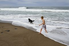 Jongen en Hond op Kust Stock Foto