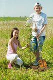 Jongen en meisje die boom planten Royalty-vrije Stock Foto