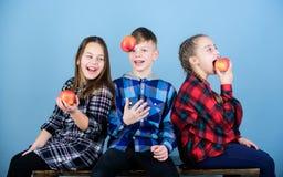 Jongen en meisjes de vrienden eten appelsnack terwijl het ontspannen Tienerjaren met gezonde snack Gezonde het op dieet zijn en v stock foto's