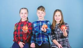Jongen en meisjes de vrienden in gelijkaardige geruite kleren eten appel Tienerjaren met gezonde snack Het gezonde op dieet zijn  stock afbeeldingen