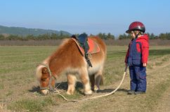 Jongen en poney stock afbeeldingen
