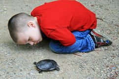 Jongen en Schildpad Stock Foto's