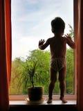 Jongen en venster Stock Fotografie