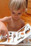Jongen en zijn boek Stock Foto's