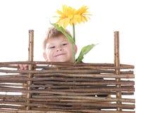 Jongen en zonnebloem Royalty-vrije Stock Foto