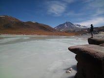 Jongen het bewonderen landschap in Atacama-Woestijn, Chili stock afbeeldingen