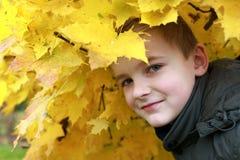 Jongen in het de herfstpark stock fotografie