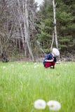 Jongen het plukken paardebloemen Stock Afbeelding