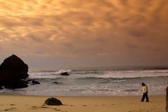 Jongen in het strand Stock Afbeeldingen
