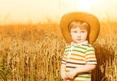 Jongen in hoed bij de zomertarwe Royalty-vrije Stock Foto's