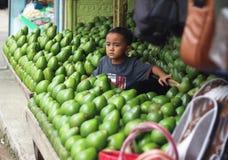 Jongen met avocado's bij de markt stock fotografie