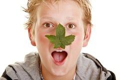 Jongen met blad op zijn neus Stock Fotografie