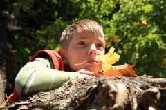 Jongen met bladeren - de herfst Royalty-vrije Stock Foto's