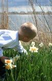 Jongen met bloemen Stock Foto