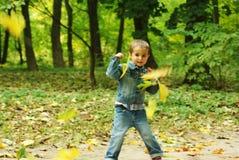 Jongen met gele bladeren Stock Foto's