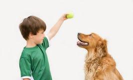Jongen met Hond Stock Afbeeldingen