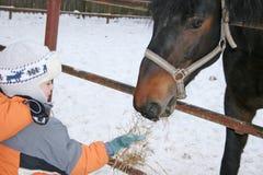 Jongen met paard Royalty-vrije Stock Foto's