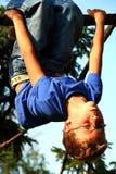 Jongen op de boom Stock Fotografie