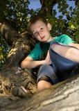 Jongen op de boom in tuin Stock Afbeelding