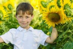 Jongen op een zonnebloemengebied stock afbeelding