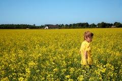 Jongen op geel gebied royalty-vrije stock afbeelding