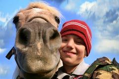 Jongen, paard en honden Royalty-vrije Stock Foto's