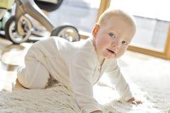 jongen van de 6 maand de oude baby Stock Foto's