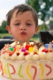 Jongen in varenblad van verjaardagscake stock foto's