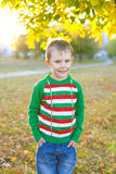 Jongen vijf jaar in een heldere sweater in openlucht in de herfst Royalty-vrije Stock Afbeeldingen