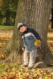 Jongen voor boom Stock Afbeelding