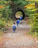 Jongens die in de Herfst spelen royalty-vrije stock afbeeldingen