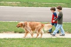 Jongens die de hond lopen stock afbeelding